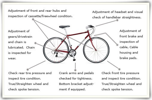 $45 Basic Tune-up Diagram, INRUSH bicycles 3210 Crescent Ave. Fort Wayne, Indiana 46805 Fort Wayne's Best Bike Shop!